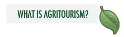 What is Agritourism?